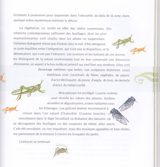 page insectes